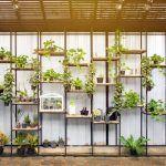 El huerto ecológico en casa como ejercicio de sostenibilidad