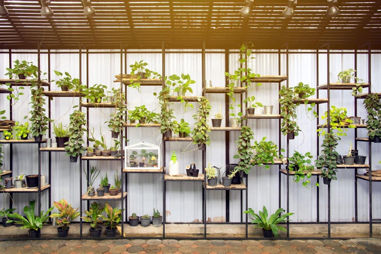 huerto ecologico en casa